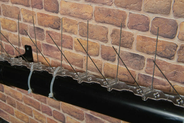Pipe Spikes