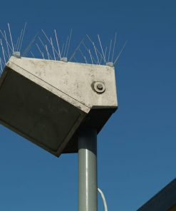 Steel Gull Spikes